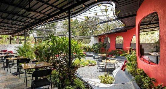 Để tạo nên một không gian xanh cho nhà hàng bạn nên tận dụng những khoảng sân trống để bố trí cây cảnh.